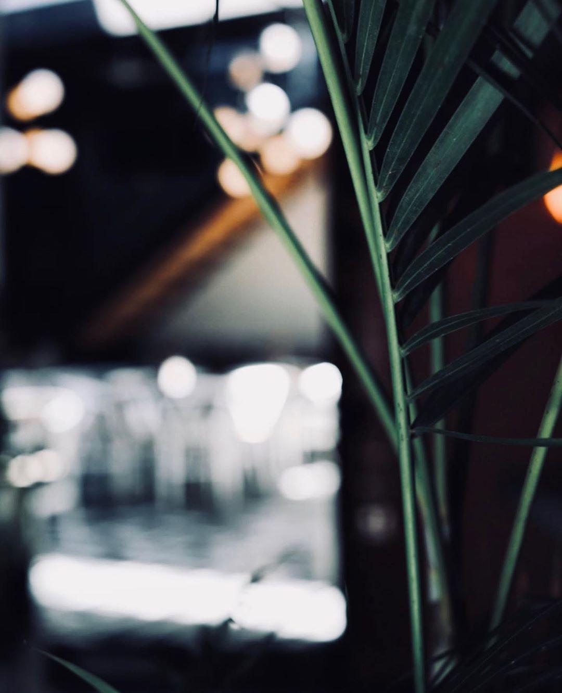 rustica-patio