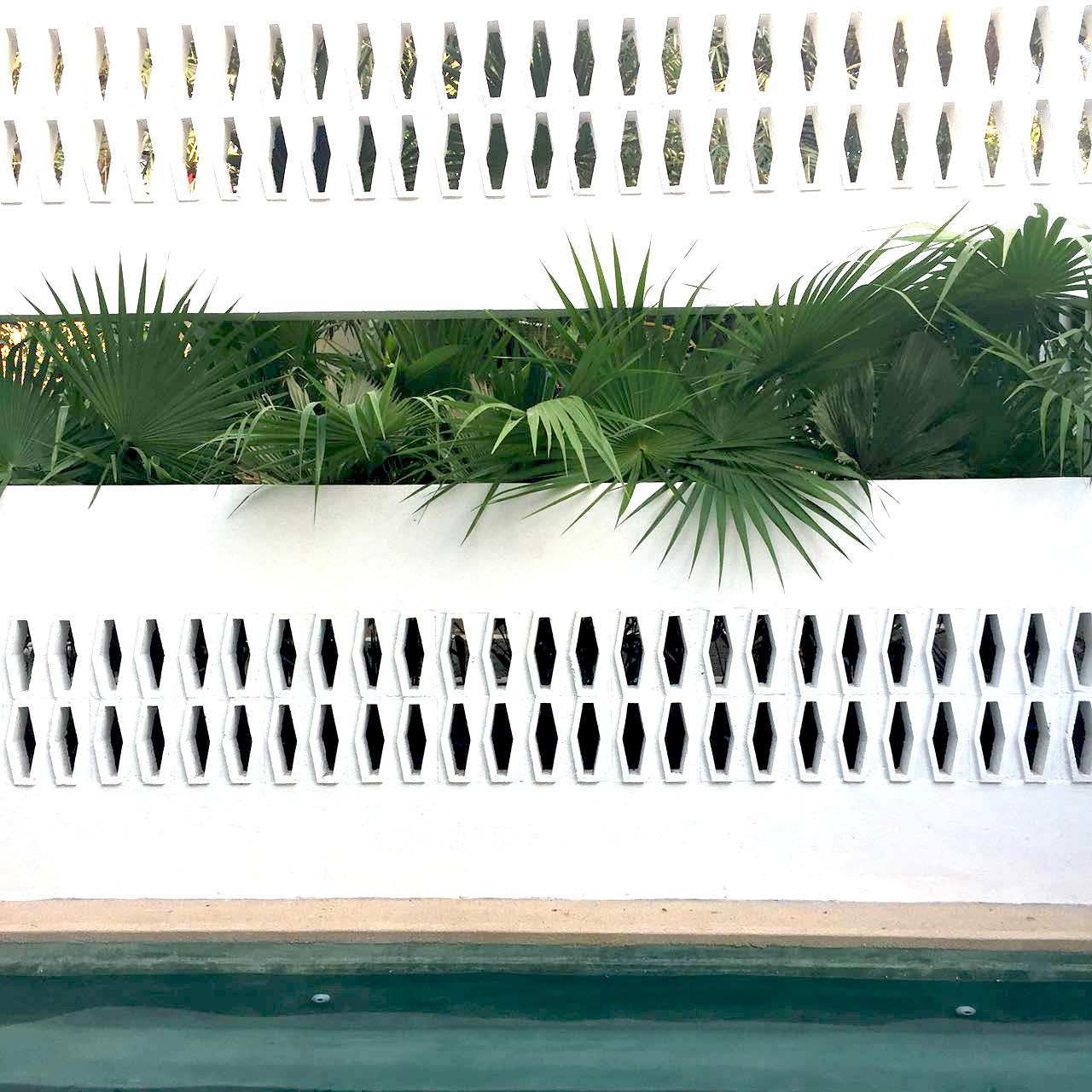 muro-alberca