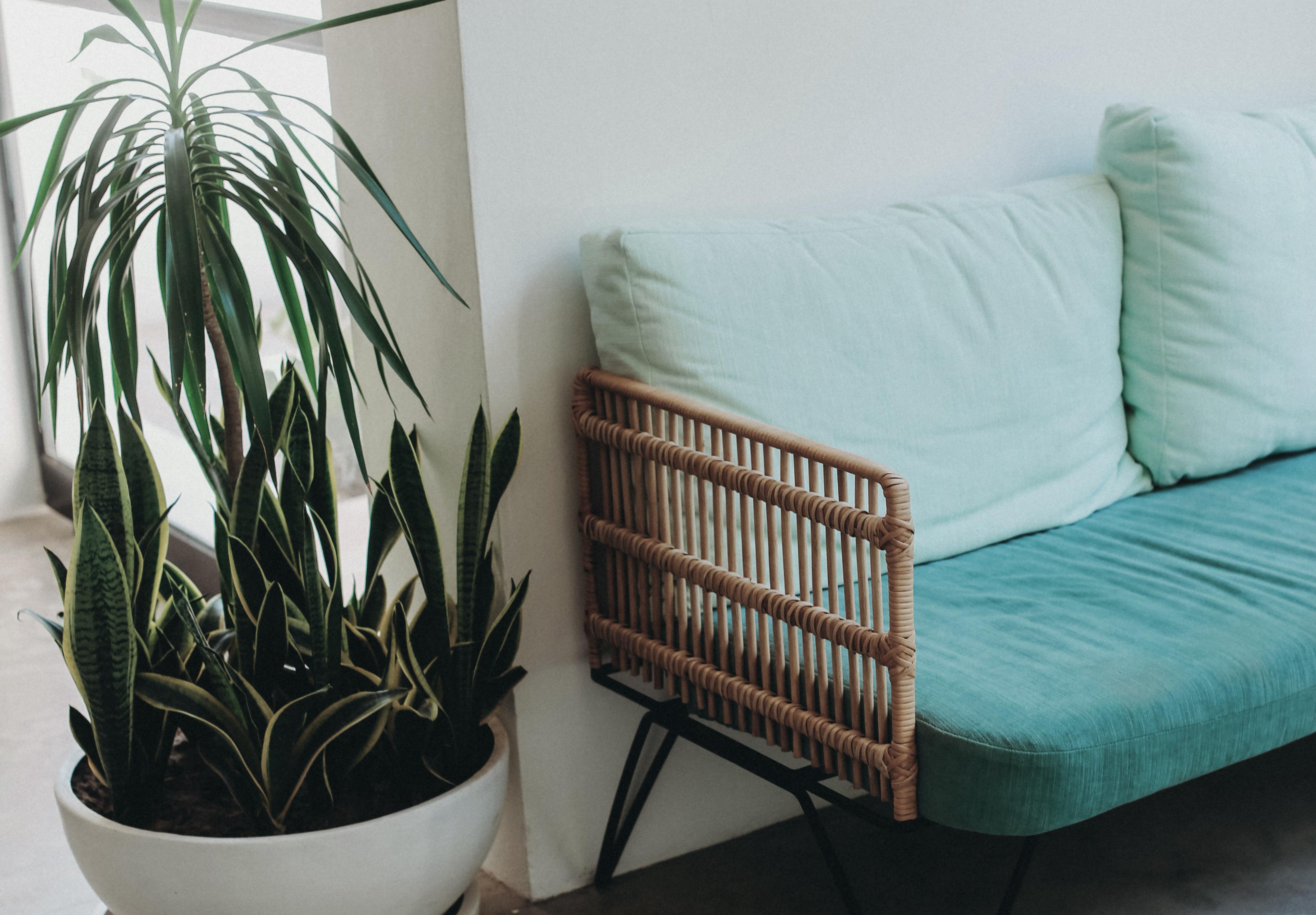 hotel-design-boutique-interiors-decor-lobby-2-donbonito111111